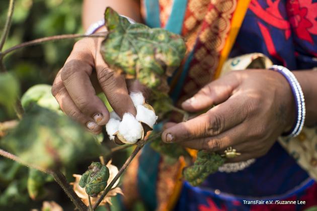 Fairtrade-Baumwolle